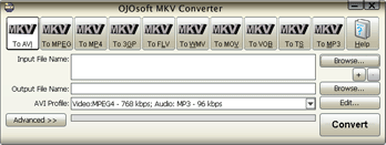 OJOsoft MKV Converter